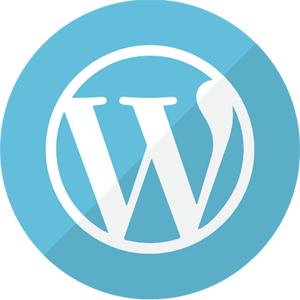 WordPress Development & Design Buffalo NY